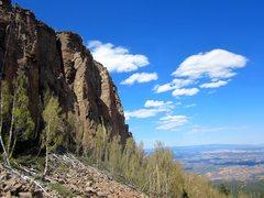 Rock Climbing Photo: The Lower Jungle.
