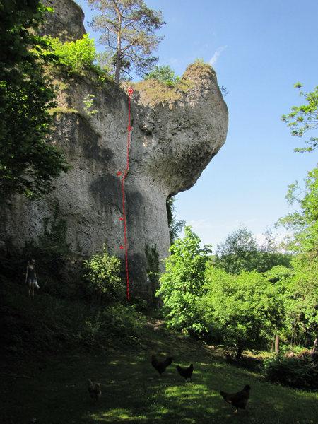 Rock Climbing Photo: Gaffer im Nacken