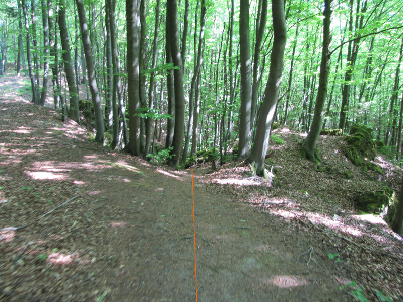 Here's the path leading down.