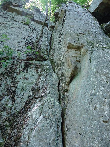 Rock Climbing Photo: Tree Hugger 5.7