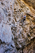 Rock Climbing Photo: Upper crux on Fossil Family.