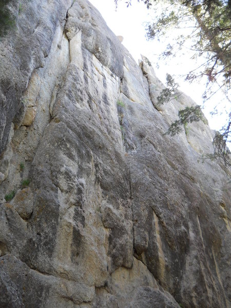 Middle cliffband, lower tier, (approx 150+ft)