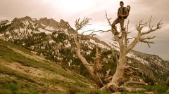 Rock Climbing Photo: On the way up to Lone Peak, Wasatch.