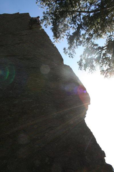 Rock Climbing Photo: narcolepsy 5.8 R