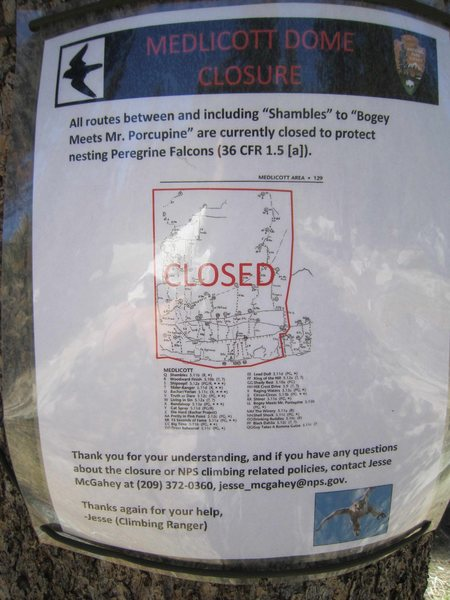 Medlicott peregrine closure sign, 6/7/12