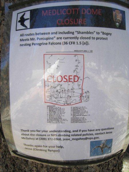 Medlicott peregrine closure sign, 6/7/12