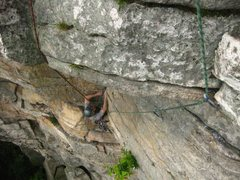 Fern on the crux