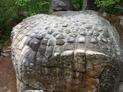 Millipede boulder, pretty crazy features!