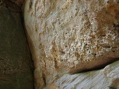 Rock Climbing Photo: Elegant sorting of material