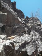 Rock Climbing Photo: Where the Wild Things Are
