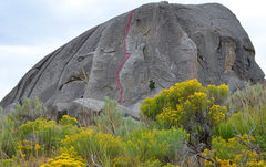 Rock Climbing Photo: Grab ahold and climb up the elephant's back