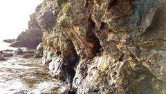Rock Climbing Photo: inaccessible wall, Dyce Head, Castine, ME