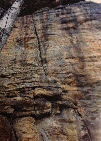 Rock Climbing Photo: King of Swing