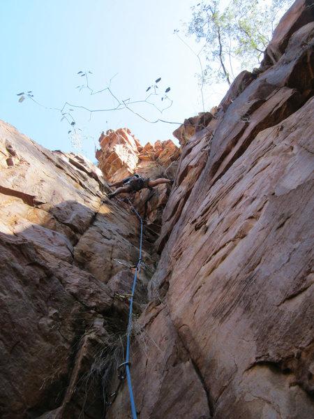 Rock Climbing Photo: Nepenthe