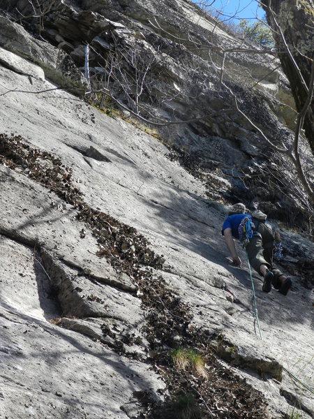 Rock Climbing Photo: Casey Bald on Strychnine