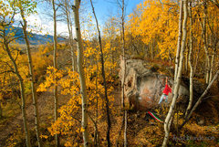 Rock Climbing Photo: This place is magical. Warm-up boulder. Skyland Bo...