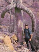 Saguaro Natl Park