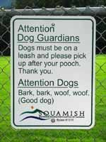 dog owners tips