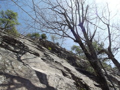 Rock Climbing Photo: Casey Bald High up on Riptide