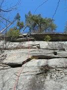 Rock Climbing Photo: Joshua Corbett on the sharp end on Trifecta.