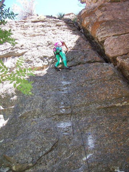 Rock Climbing Photo: Peter Zurcher on FA Photo - Sheri Kenly