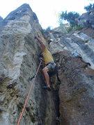 Rock Climbing Photo: Carl bites down hard on Forbidden Fruit, 5.11b.   ...
