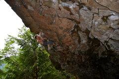 Rock Climbing Photo: climbing Giant on a wet spring Saturday