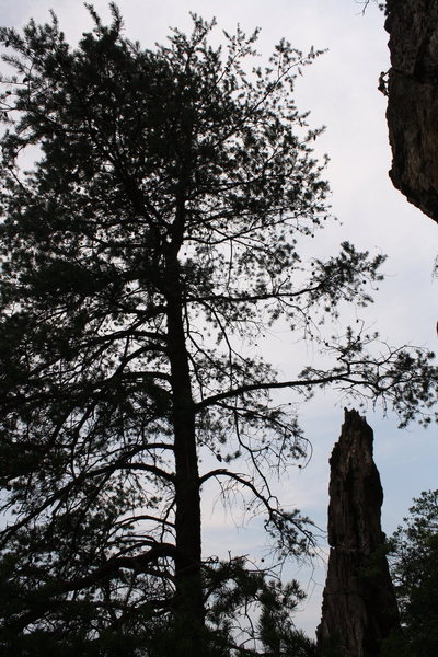 Rock Climbing Photo: Two Pitch Wall  Robert Hutchins climbs (FS) Two Pi...
