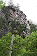 Rock Climbing Photo: Nuke The Whales Wall  Crowders Mountain State Park...