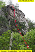 Rock Climbing Photo: Nuke The Whales Wall  Nuke The Whales (5.6)trad  C...