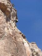 Rock Climbing Photo: Ashley working it high on Ladies' Night in Buffalo...