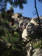 Rock Climbing Photo: Eva contemplating the dihedral.