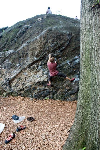 bouldering Rat Rock in Central Park