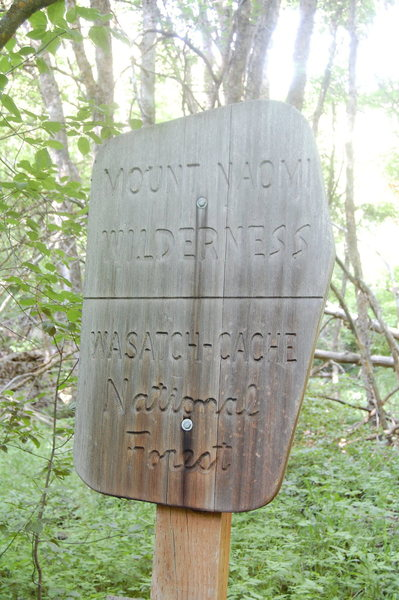 Rock Climbing Photo: trail marker