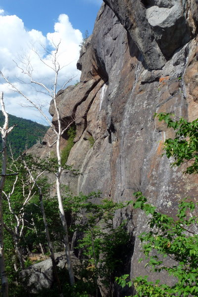 Rock Climbing Photo: View of Barkeater Cliff