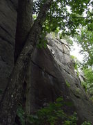 Rock Climbing Photo: Jimmy Jazz on Mean Streak