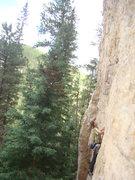 Rock Climbing Photo: Reggie prepares to onsight Mary Jane, 5.11b. Onsig...