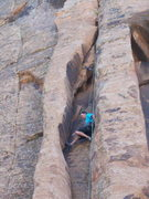 Rock Climbing Photo: taylor