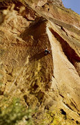 Rock Climbing Photo: Me on MOP. Great line!