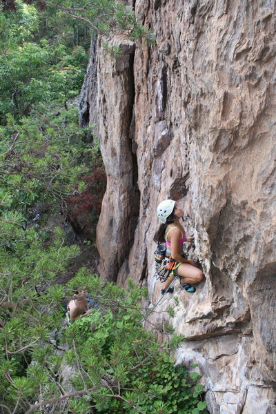 Rising Sun Wall<br> <br> Geniey has a strick ground up onsight mentality when reasonable.<br> <br> No Added Weight(5.10) sport<br> <br> Crowders Mountain State Park, North Carolina