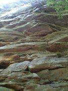 Rock Climbing Photo: Looking up at Uni-Boob.