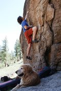 Rock Climbing Photo: Long reach from a two finger pocket on Problem E
