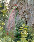 Rock Climbing Photo: PTFE = 4