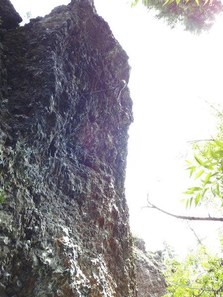 Rock Climbing Photo: The steepness!