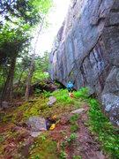 Rock Climbing Photo: main face at Mount Doug