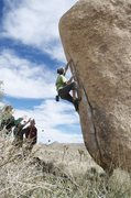 Rock Climbing Photo: Joshua Tree