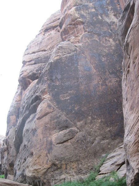 Rock Climbing Photo: Black Douglas climbs the left side of the face.