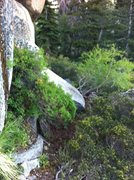 Rock Climbing Photo: New trail leading to base of what should be popula...
