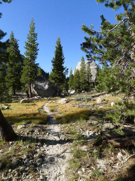Rock Climbing Photo: trail to Tenaya Lake