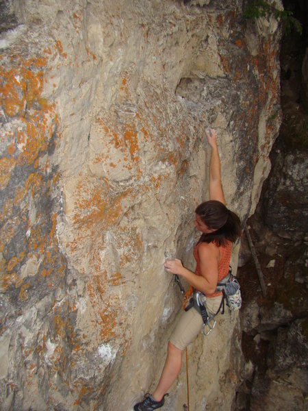 A nice, challenging climb with a whole lot of holds.<br> <br> Skywalker, 5.9+